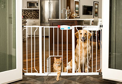 5 Pet Gates With A Cat Door | 2017 Reviews | PetAndBabyGates