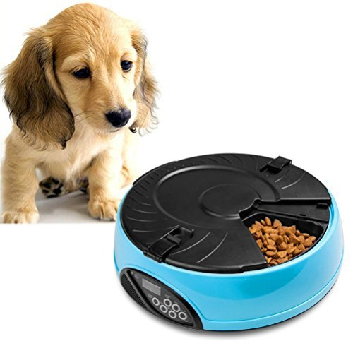 The Best Automatic Cat Feeders 2018 Reviews Petandbabygates