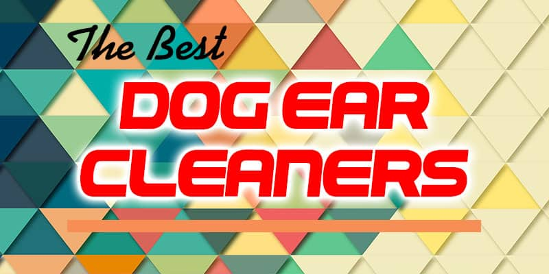 The Best Dog Ear Cleaners