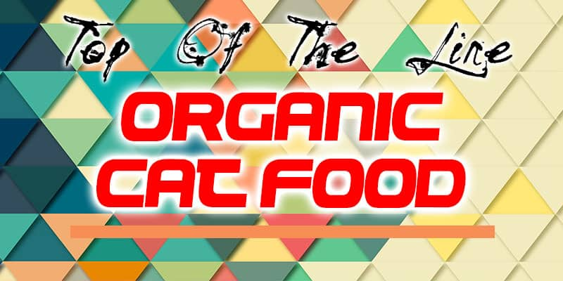 Best 5 Organic Cat Food