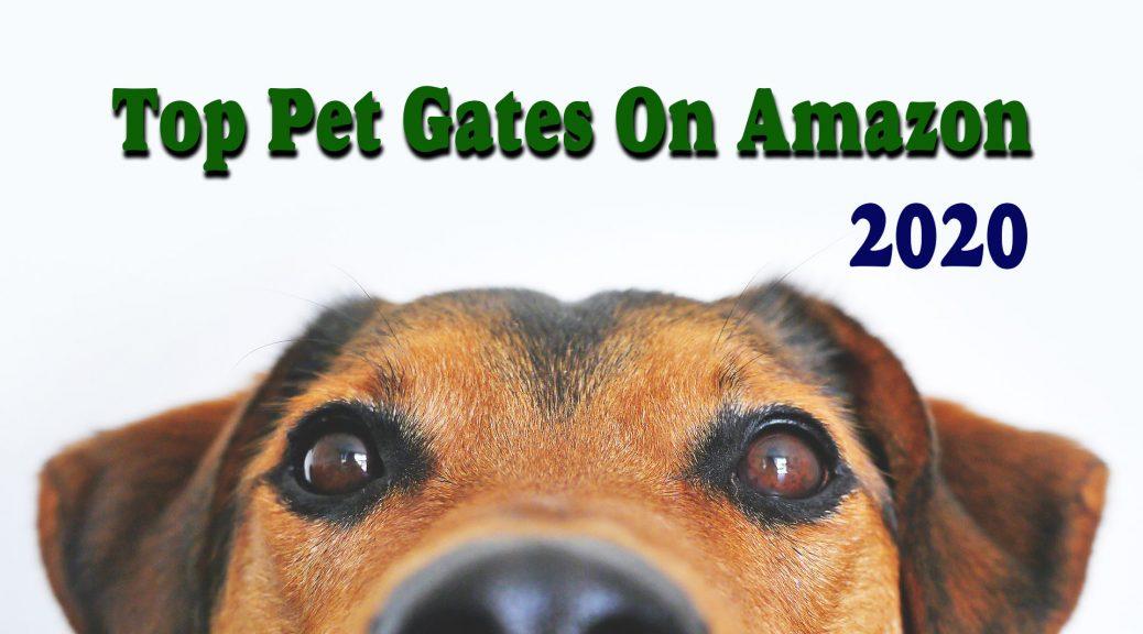 Amazon Gates